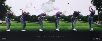 "Tiger Woods Signed 36x15 Panoramic ""Art of the Swing"" Photo Limited Edition #68/250 (UDA COA)"