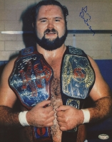 Arn Anderson Signed 8x10 Photo (Schwartz COA) at PristineAuction.com
