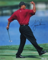 "Tiger Woods Signed ""Fist Pump"" 16x20 Photo (UDA COA)"