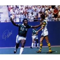 Pele Signed Cosmos 16x20 Photo (Steiner COA)