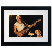 "Rob Shanahan Signed ""Sting"" Limited Edition 25x32 Custom Framed Giclee"