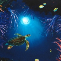 """Wyland Signed """"Coral Reef Garden"""" Limited Edition 27x20 Giclee on Canvas at PristineAuction.com"""