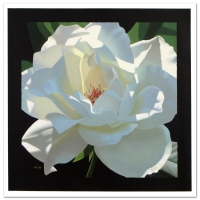 """Brian Davis Signed """"Rose in the Shadows"""" Limited Edition 20x20 Giclee on Canvas at PristineAuction.com"""