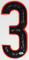 "Walter Payton Signed Bears 35"" x 43"" Custom Framed Jersey with (5) Career Stat Inscriptions (PSA LOA) at PristineAuction.com"