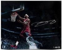 """LeBron James Signed Heat """"Over The Top"""" LE 16x20 Photo (UDA COA)"""
