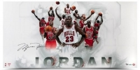 Michael Jordan Signed Chicago Bulls LE 18x36 Photo (UDA COA) at PristineAuction.com
