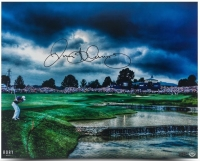 "Rory McIlroy Signed ""Final Approach"" 16x20 Photo (UDA COA)"