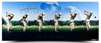 "Rory McIlroy Signed ""Art of The Swing"" LE 15x36 Panoramic Photo (UDA COA) at PristineAuction.com"