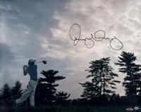 "Rory McIlroy Signed ""Into The Horizon"" 16x20 Photo (UDA COA)"