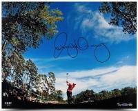 "Rory McIlroy Signed ""Sky View"" LE 16x20 Photo (UDA COA)"