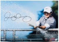 "Rory McIlroy Signed ""Spray Of Victory"" 16x20 Photo (UDA COA)"