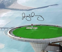 "Rory McIlroy Signed ""Top of the Tower"" 20x24 Photo (UDA COA) at PristineAuction.com"