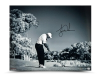 "Tiger Woods Signed ""Contact"" 16x20 Photo (UDA COA) at PristineAuction.com"