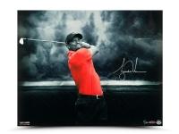 "Tiger Woods Signed ""Quiet Storm 16x20 Photo (UDA COA)"