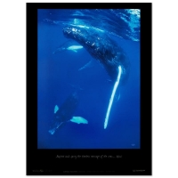 "Wyland ""Humpback Encounter"" 19x26 Poster"