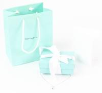 Tiffany & Co. Silver Elsa Peretti Tear Drop Necklace with Original Box