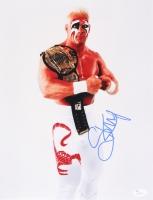 "Steve ""Sting"" Borden Signed WWE 11x14 Photo (JSA COA)"