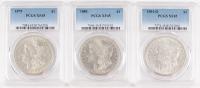 Lot of (3) Graded PCGS XF45 Morgan Silver $1 Dollar Coins