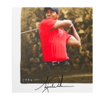"Wayne Gretzky, Michael Jordan & Tiger Woods Signed LE ""Icons of Sport"" 24x48 Print (UDA COA) at PristineAuction.com"