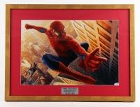 "Stan Lee Signed Spider Man 18.5"" x 24"" Custom Framed Photo Display (PSA COA)"