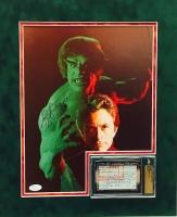 """Lou Ferrigno & Bill Bixby Signed """"The Incredible Hulk"""" 16"""" x 19"""" Custom Framed Display (JSA COA)"""