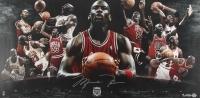 "Michael Jordan Signed LE Bulls ""Hall of Fame"" 18"" x 36"" Photo (UDA COA)"