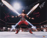 "Sean ""X-Pac"" Waltman Signed WWE 16x20 Photo Inscribed ""Suck It!"" (MAB)"
