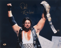 """Kevin Nash Signed WWE 16x20 Photo Inscribed """"Diesel"""" (MAB)"""