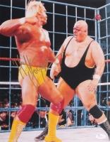 Hulk Hogan Signed 11x14 Photo (JSA COA)