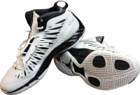 Gerald Wallace Game Used Jordan Lunarlon Basketball Shoes (Steiner COA)