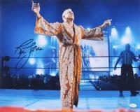 "Ric Flair ""Nature Boy"" Signed 16x20 Photo (JSA COA)"