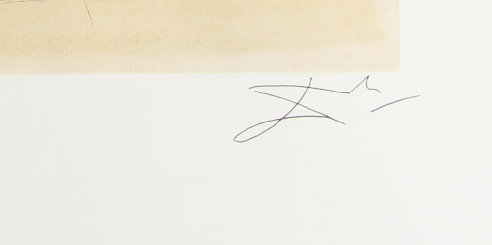 Salvador Dali Le Cosmic Horseman 22 X 23 Lithograph At Pristineauction