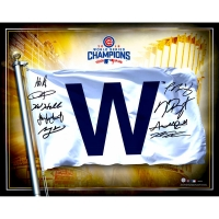 2016 Cubs World Series Champions 16x20 Photo Team-Signed by (9) with Kris Bryant, Anthony Rizzo, Jake Arrieta, Kyle Hendricks, Javier Baez, Dexter Fowler, Kyle Schwarber (MLB & Fanatics)