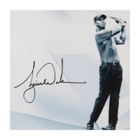 "Tiger Woods Signed ""Clarity"" 16x20 Photo (UDA COA)"