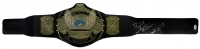 "Bret ""The Hitman"" Hart Signed WWE Winged Eagle Championship Belt (JSA COA) at PristineAuction.com"
