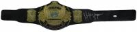 Hulk Hogan Signed WWE Winged Eagle Championship Belt (JSA COA)