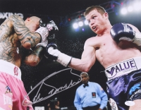 Canelo Alvarez Signed 11x14 Photo (JSA COA)