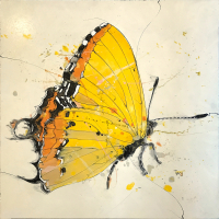 """""""Butterfly 4"""" 24x24x2 Original Butterfly Painting by Jimmi Toro"""