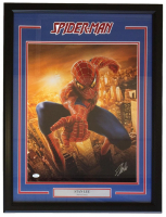 "Stan Lee Signed ""Spider-Man"" 23x30 Custom Framed Photo Display (JSA COA)"