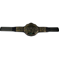 Aaron Rodgers Signed WWE World Heavyweight Championship Commemorative Title Belt (Steiner COA) at PristineAuction.com