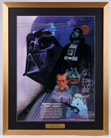 "Vintage 1977 Coca-Cola ""Star Wars"" Darth Vader 24x30 Custom Framed Poster"