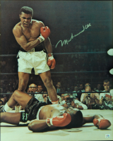 Muhammad Ali Signed 16x20 Photo (PSA COA)