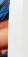 Tim Tebow Signed 24x35 Custom Career Showcase Poster (JSA COA) at PristineAuction.com